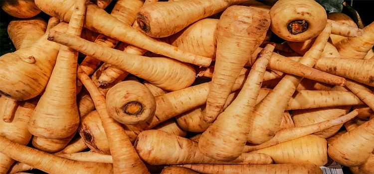 Q 17. WHAT VEGETABLE IS THIS?