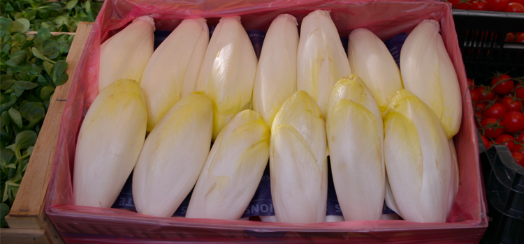Q 29. WHAT VEGETABLE IS THIS?