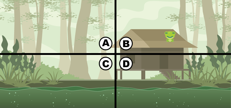 Q 1. CAN YOU SPOT THE FROG?