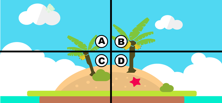 Q 8. CAN YOU SPOT THE FROG?