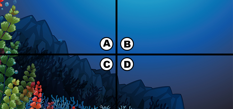 Spot The Chameleon Latest Quiz Answers 100% Score || Spot The Chameleon Latest Quiz Answers  2021